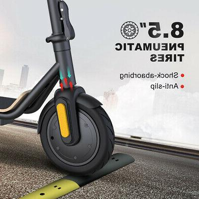 New ! Scooter Adult, with New Folding , Black